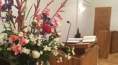 週報2020年5月17日在宅礼拝
