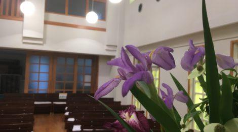 週報2020年5月24日在宅礼拝